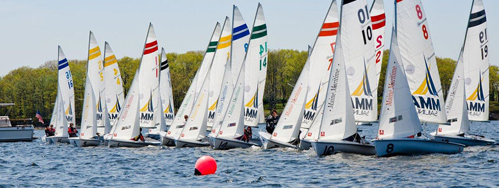Racing sailboats in Castine Harbor