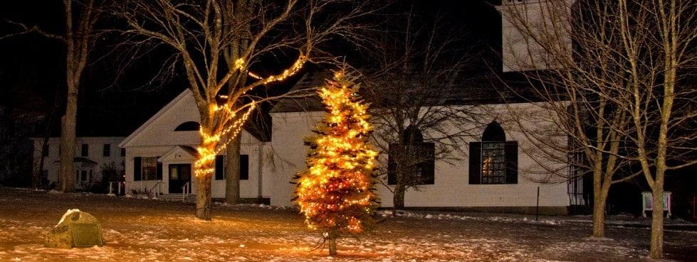 Castine Town Tree-5441