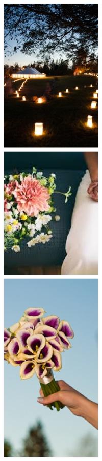 Wedding Services in Castine Maine