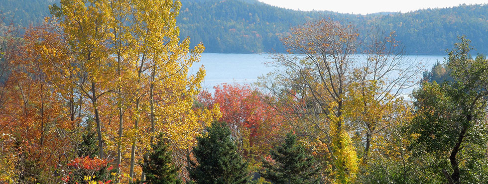 Castine Maine in the Fall
