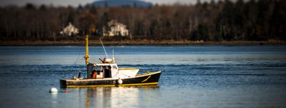 lobster boat in castine harbor